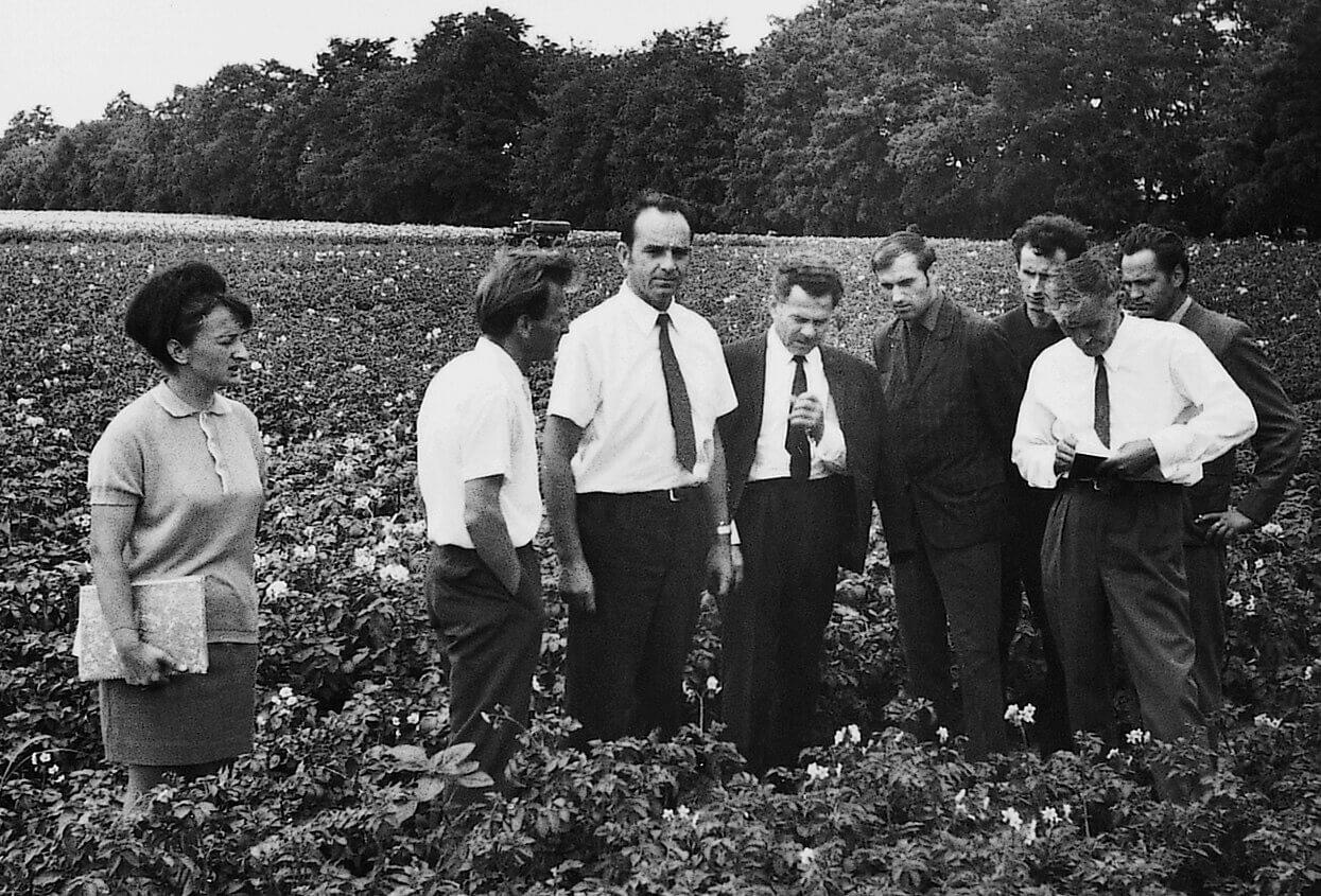 Szántóföldi burgonyakísérlet bemutatóján a Nyírségi Mezőgazdasági Kísérleti Intézet Teichmann-telepén (Kisvárda, 1967)